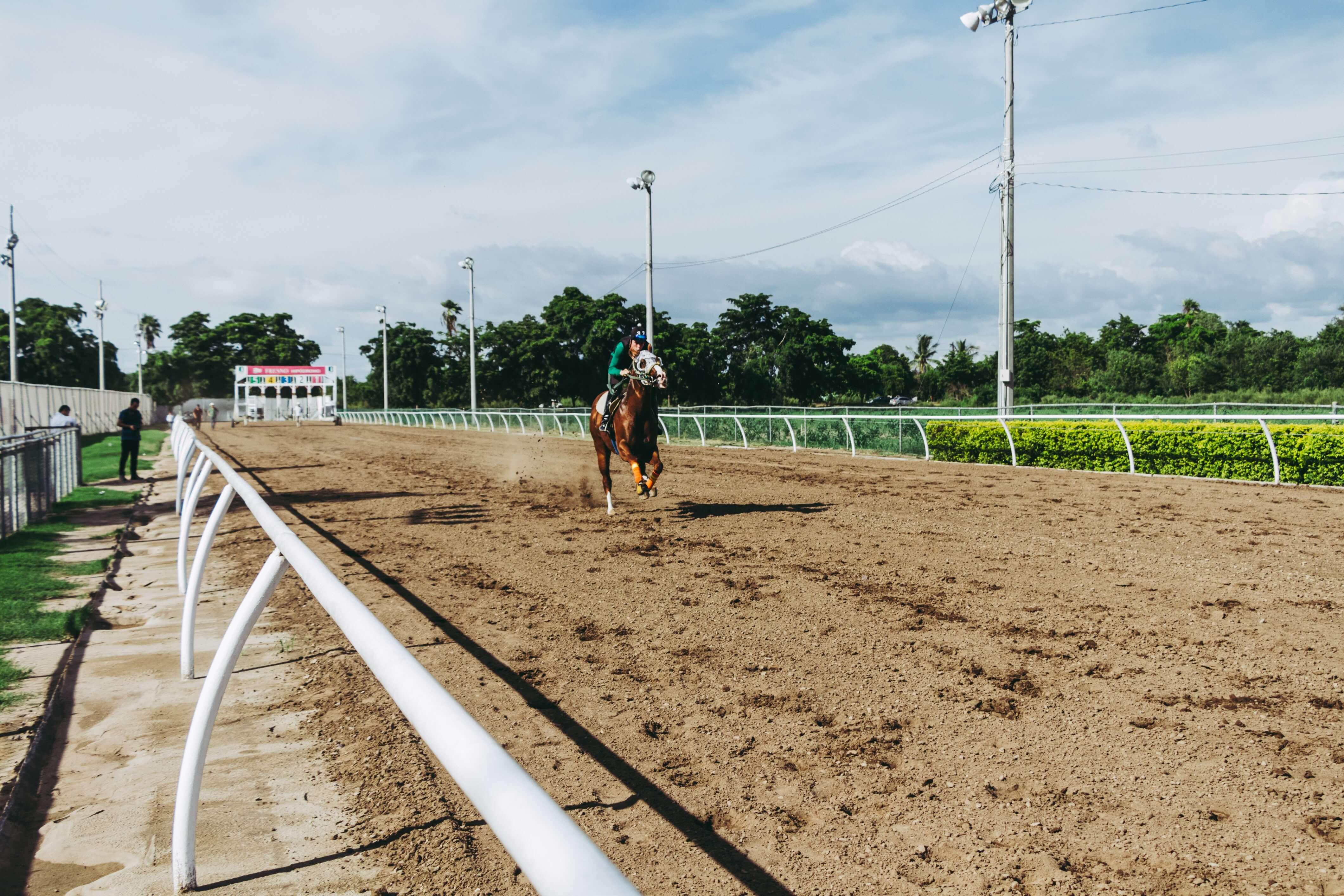 Introduktion til betting på hestevæddeløb